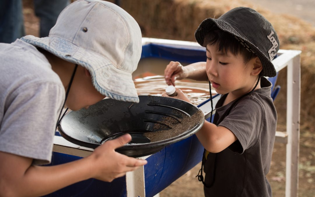 Gold panning at Mount Misery Gold Mine Cafe and Museum.