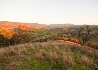 The Hills of Gold, Nundle, are proposed for a $600 million wind farm with public meetings in March 2018.